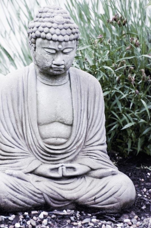 Cool-Buddha